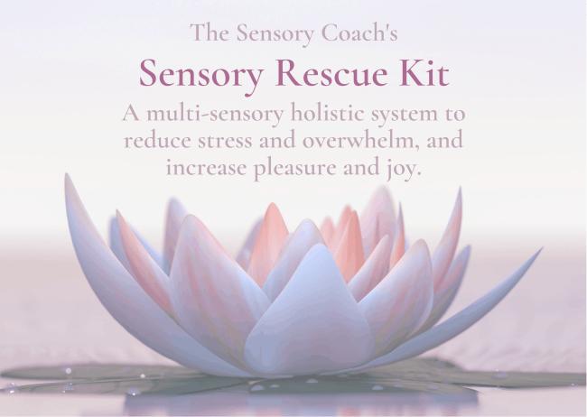 Sensory Rescue Kit from The Sensory Coach