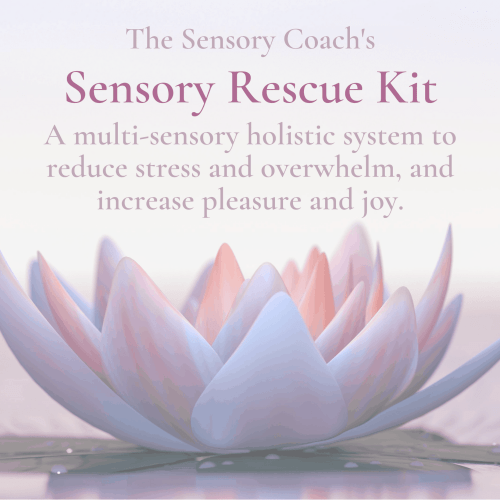 Sensory Rescue Kit from The Sensory Coach