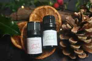 Spirit of Christmas Pine Cone Diffuser Set