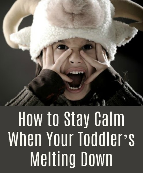 How to Stay Calm During a Toddler Meltdown