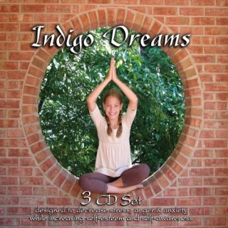 Indigo Dreams (3 CD Set) (Auditory Tools) Children's Bedtime Stories Designed to Decrease Stress, Anger and Anxiety while Increasing Self-Esteem and Self-Awareness