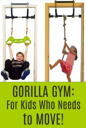 Gorilla Gym Kids with Indoor Swing, Plastic Rings, Trapeze Bar, Climbing Ladder, and Swinging Rope - for kids who need to move