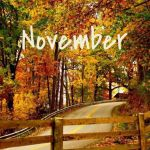 Dear November please go by more slowly than October didhellip