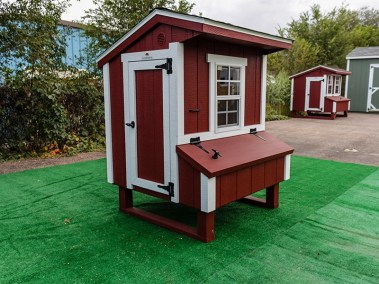 Mini chicken coop shed