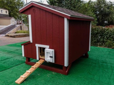 standard chicken coop shed