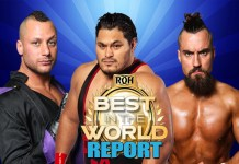 Report ROH Best In The World 2019