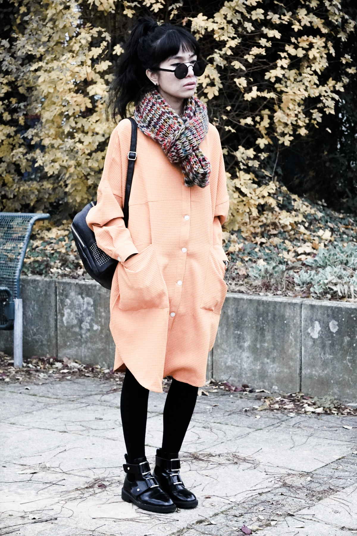 autumn long sleeves dress style