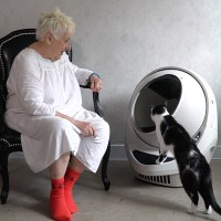 litter robot coupon automatic litter box