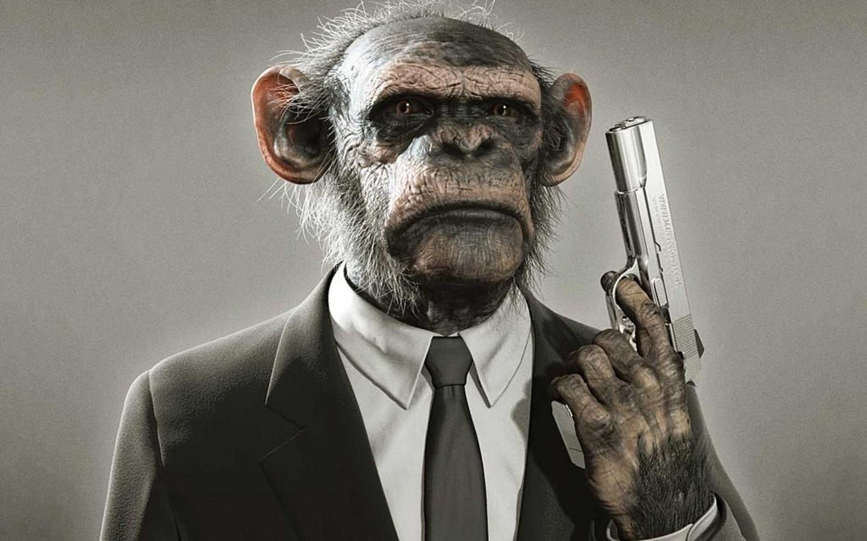 Monkey with a gun