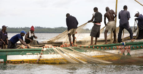 fishing in sierra leone