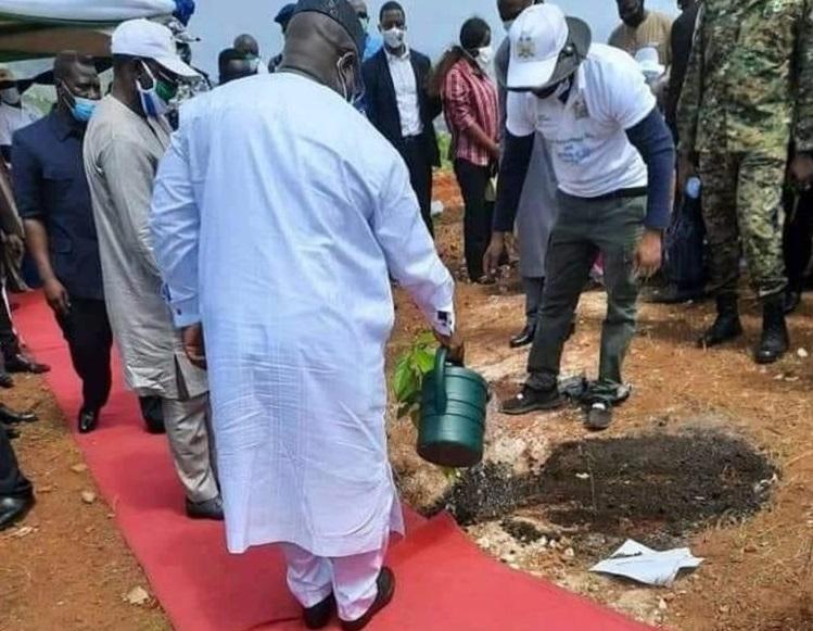 President Bio takes the red carpet to tree planting 22
