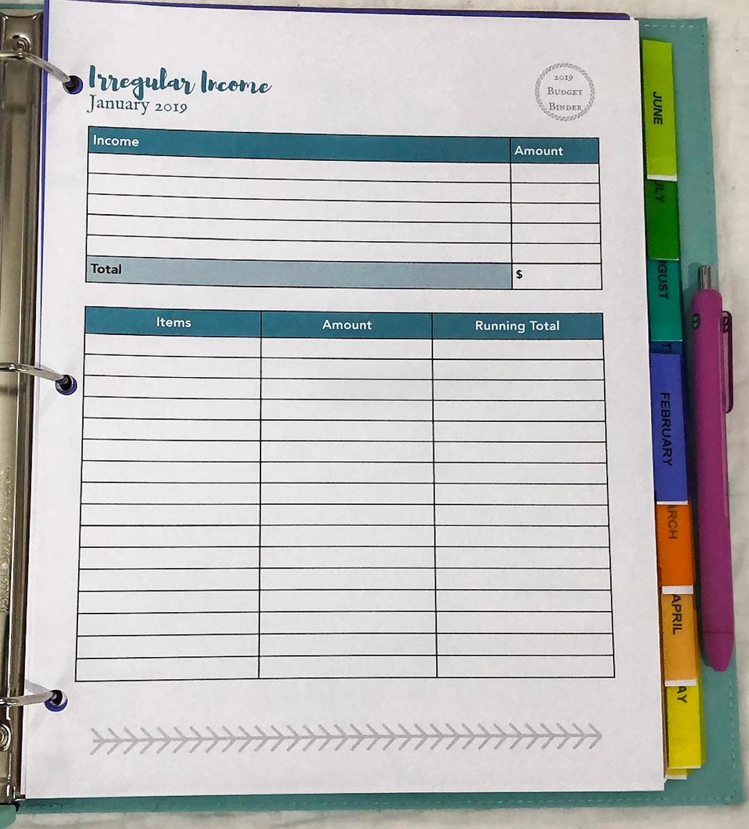 Budget Binder 17