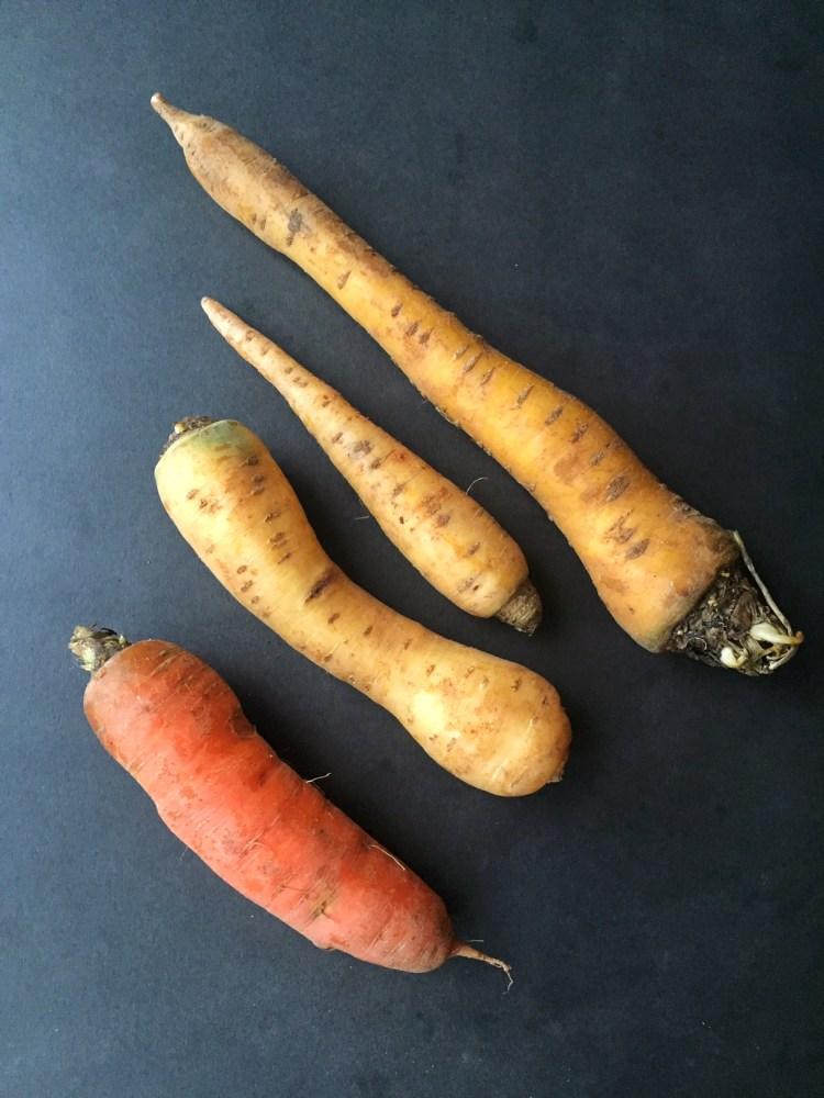 Farmigo_carrots