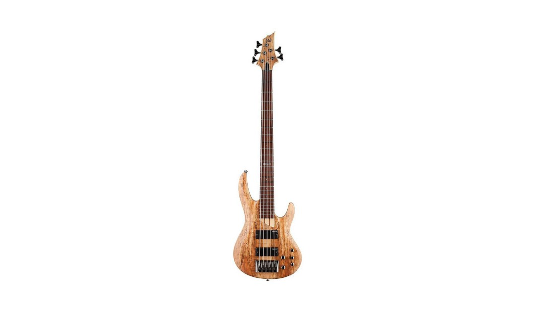 The Best Bass Guitar