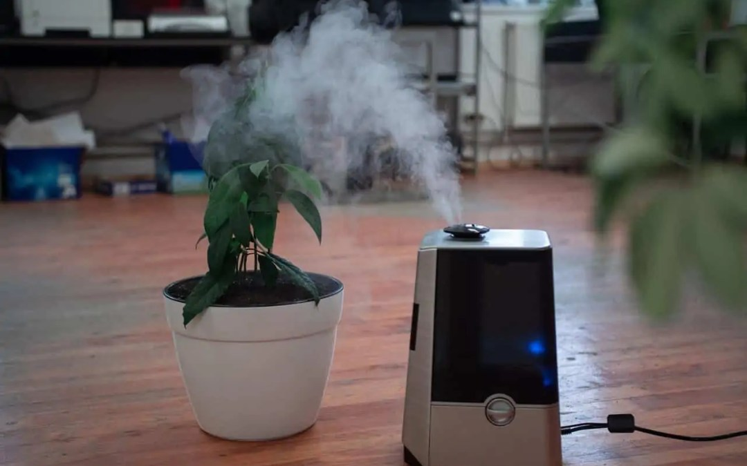How Well Do Water Based Air Purifiers Work?