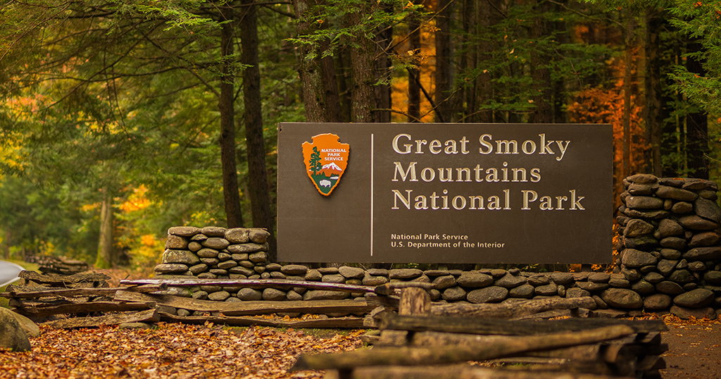 Fall colors inside the great smoky mountains national park