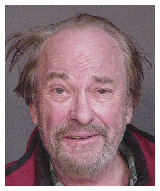 Image result for rip torn mugshot