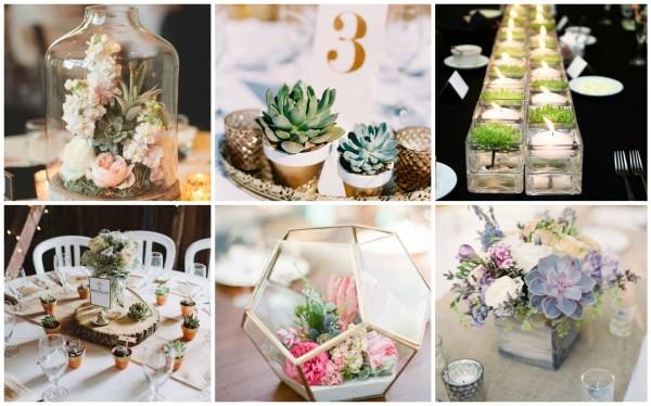 Amazing Succulent Centerpieces Collage