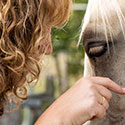 holistic healing for animals