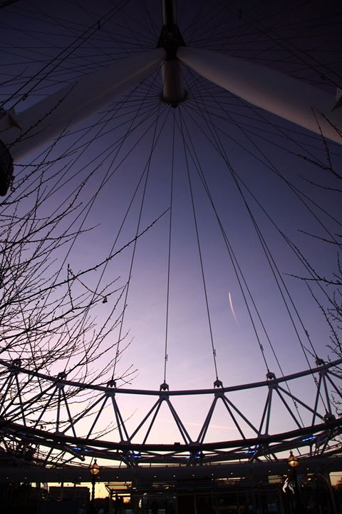 London_Eye_Lilli