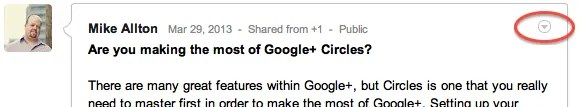 Google+ Options Menu