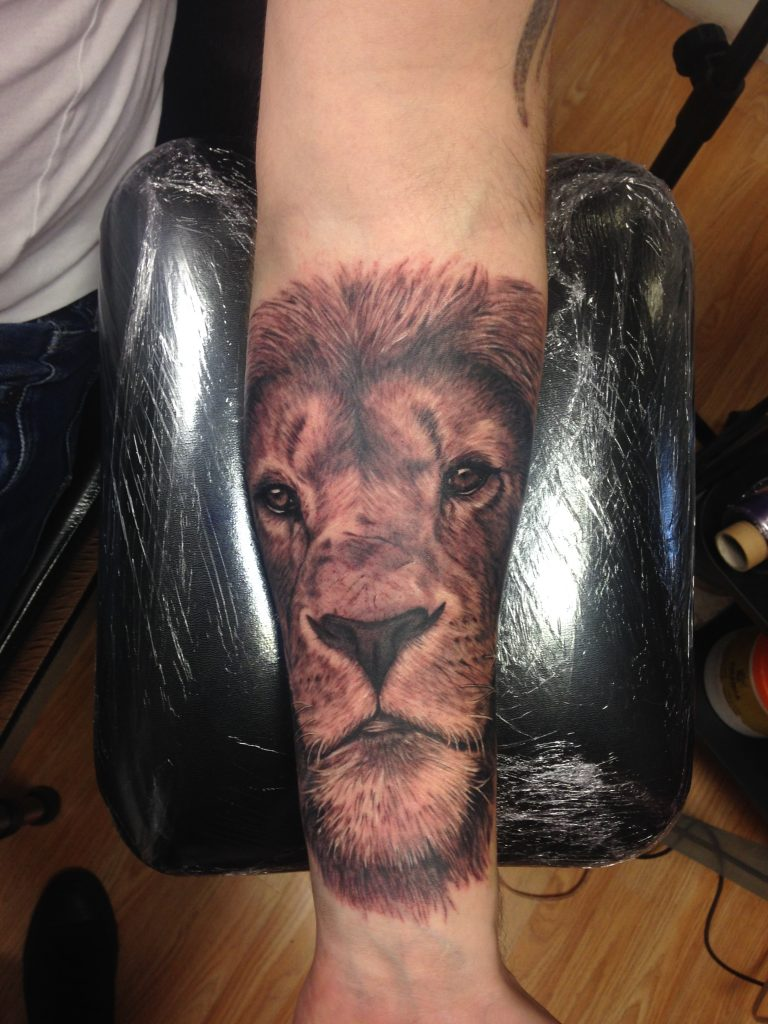 lion tattoo after