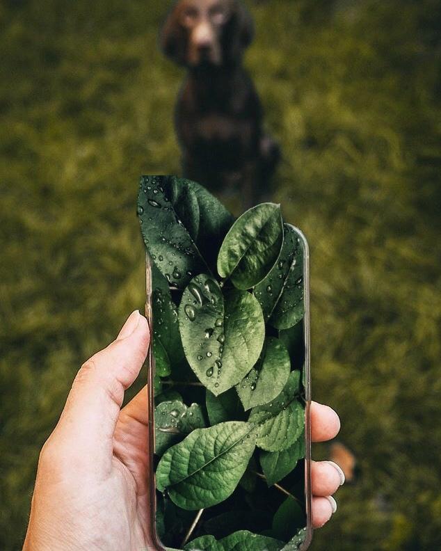 Nachhaltiges Smartphone - 3 Fakten und Empfehlung Fairphone iPhone Handy nachhaltig telefonieren