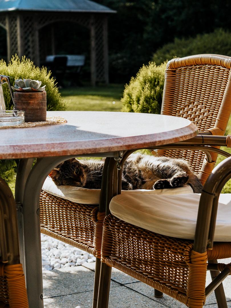 parktherme bad radkersburg blogbeitrag urlaub mit hund steiermark (33 von 44)