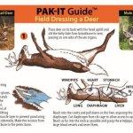 Pak-it Guide