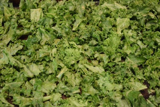 Garlic Pepper Kale Chips