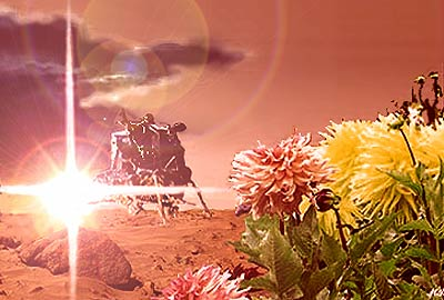 Mars flower illustration