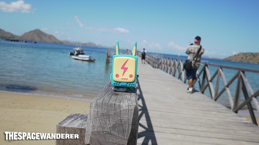 komodo-island-36-bridge