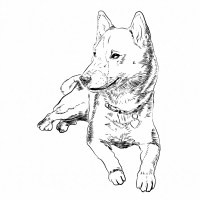 Free Coloring Book: Dogs Themed