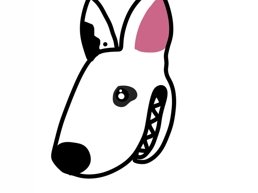 Baso the Bull Terrier