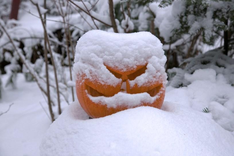 Snowy Jack O Lantern