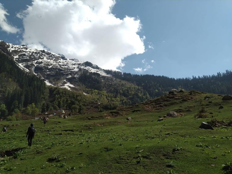 Luscious Meadows of Kheerganga in Parvati Valley