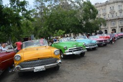 Colourful classic cars for rent