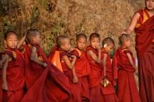 Mini-monks!