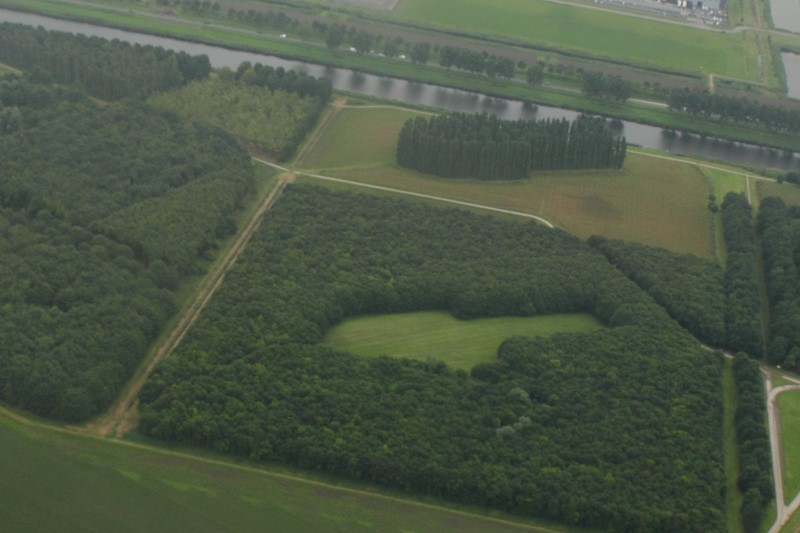 Landscape art called the Green Cathedral. The cathedral-shape 'taken out' of the forest is planted next to (above of) it in the paddock.