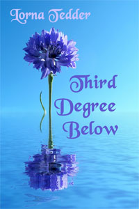 Third Degree Below