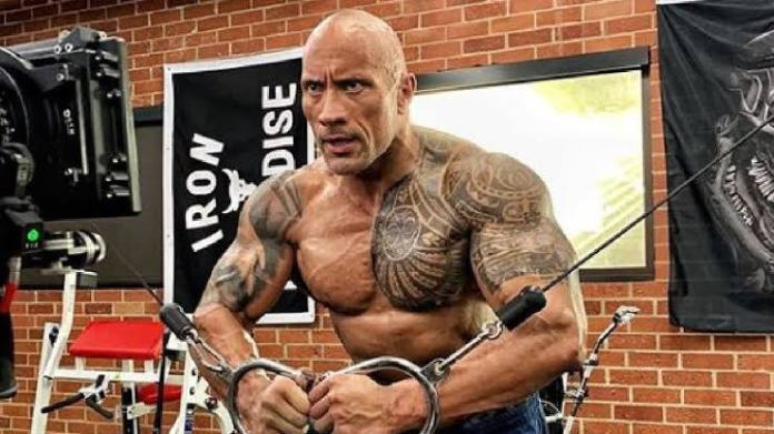 The Rock sustains terrible head injury during workout mishap - THE SPORTS ROOM