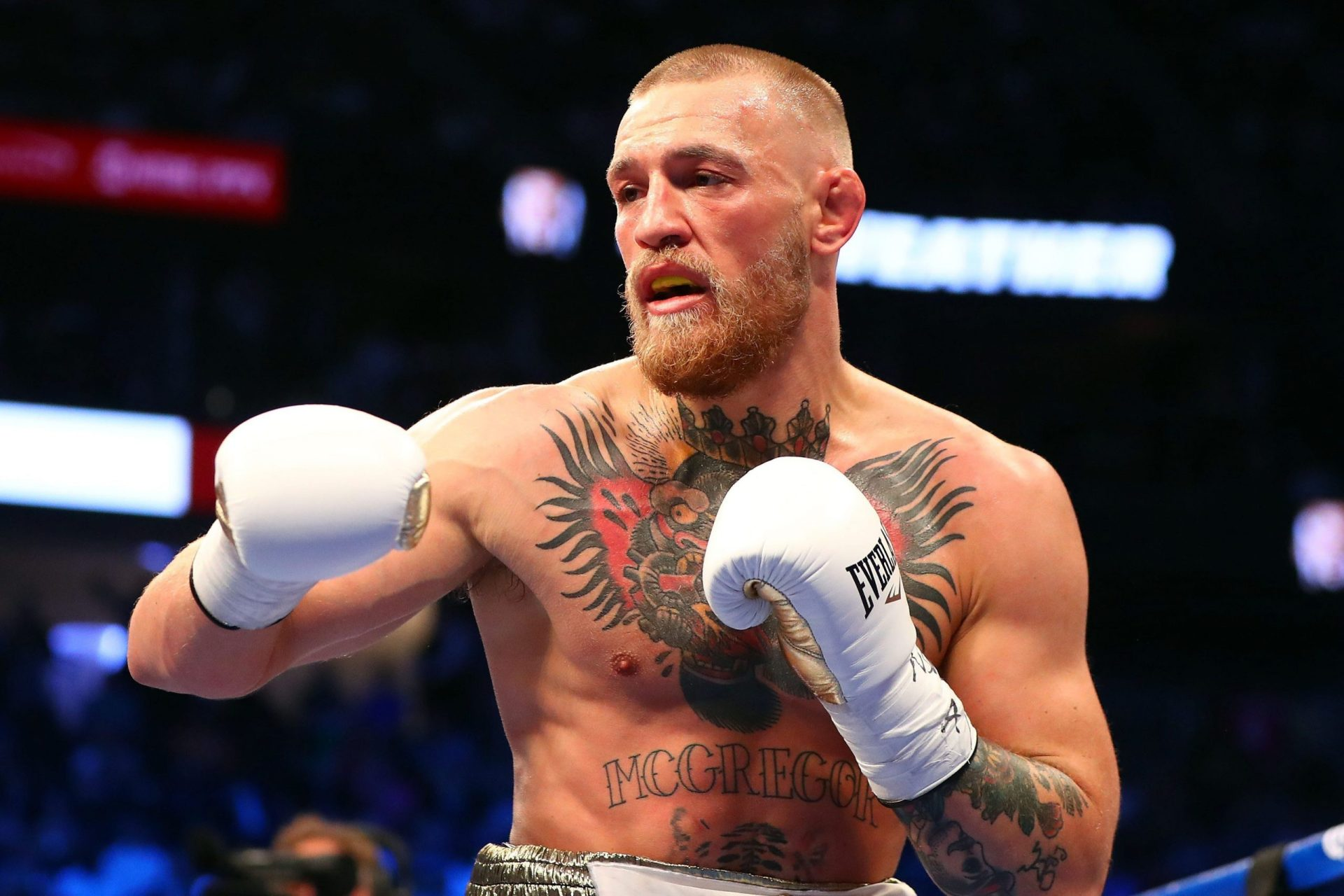 WBC president outlines how Conor McGregor can challenge for world title in boxing - THE SPORTS ROOM