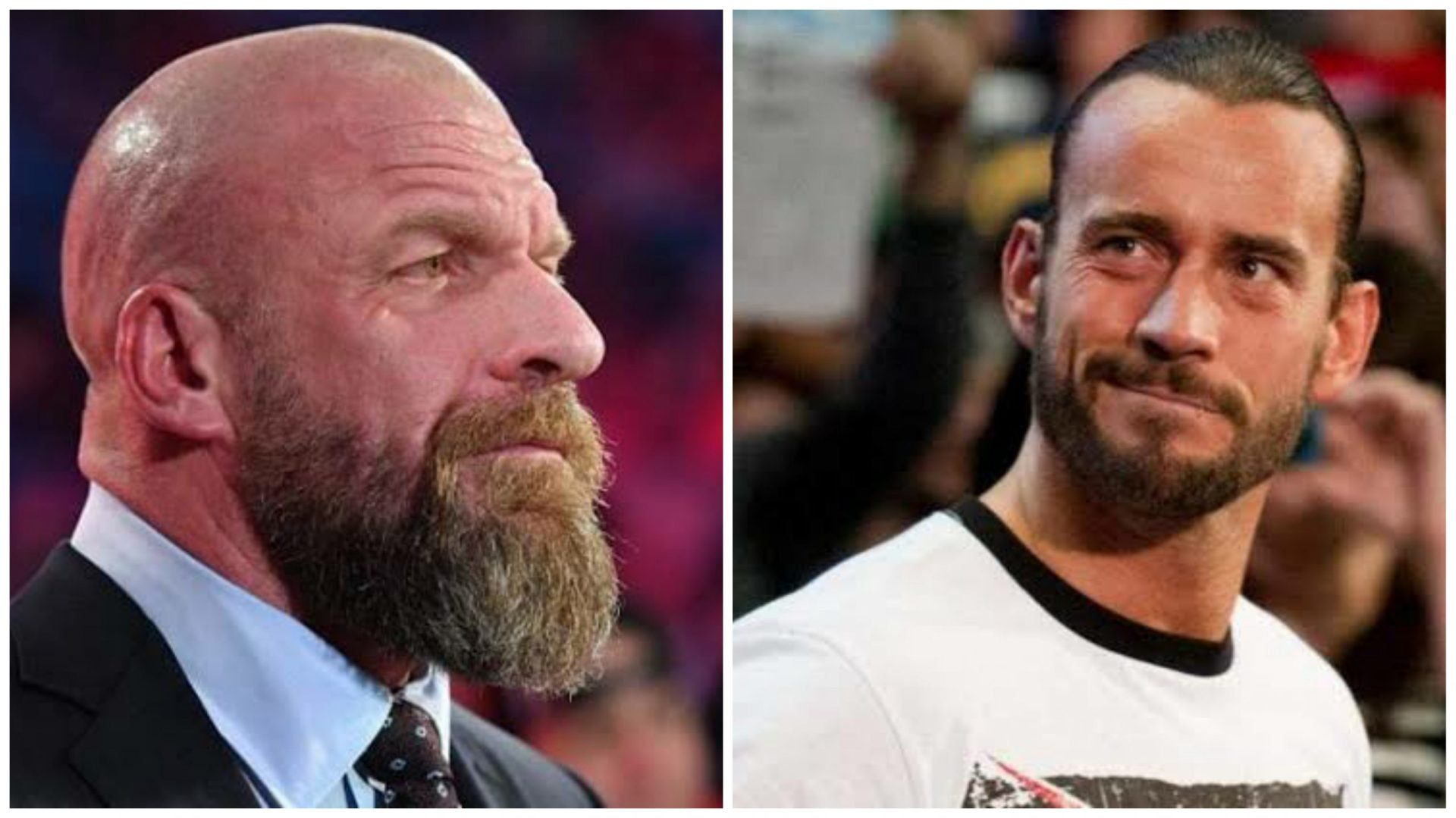 Triple H comments on the possibility of CM Punk's return - THE SPORTS ROOM