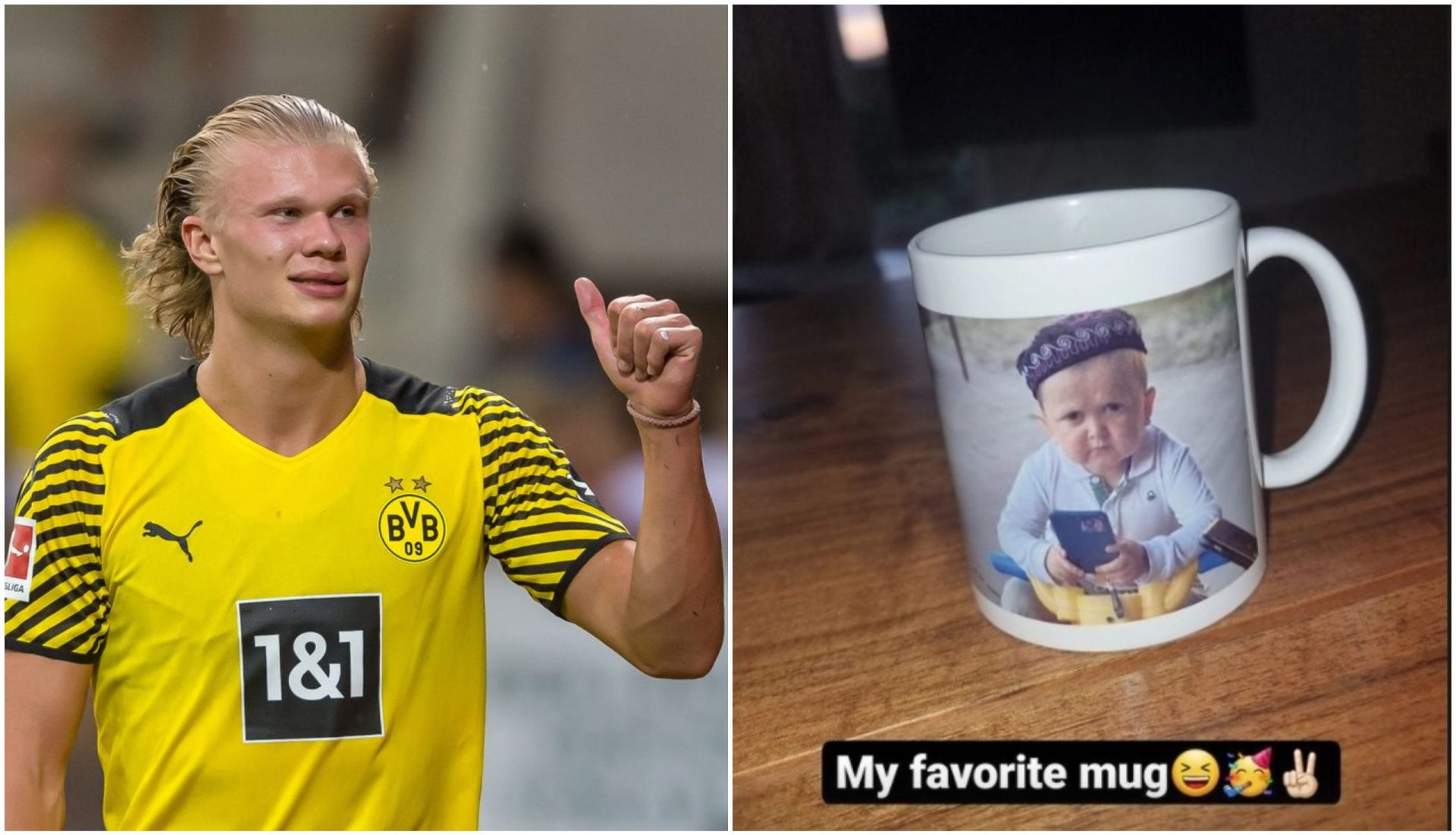 Erling Haaland is now the proud owner of a Hasbulla Mug! - THE SPORTS ROOM