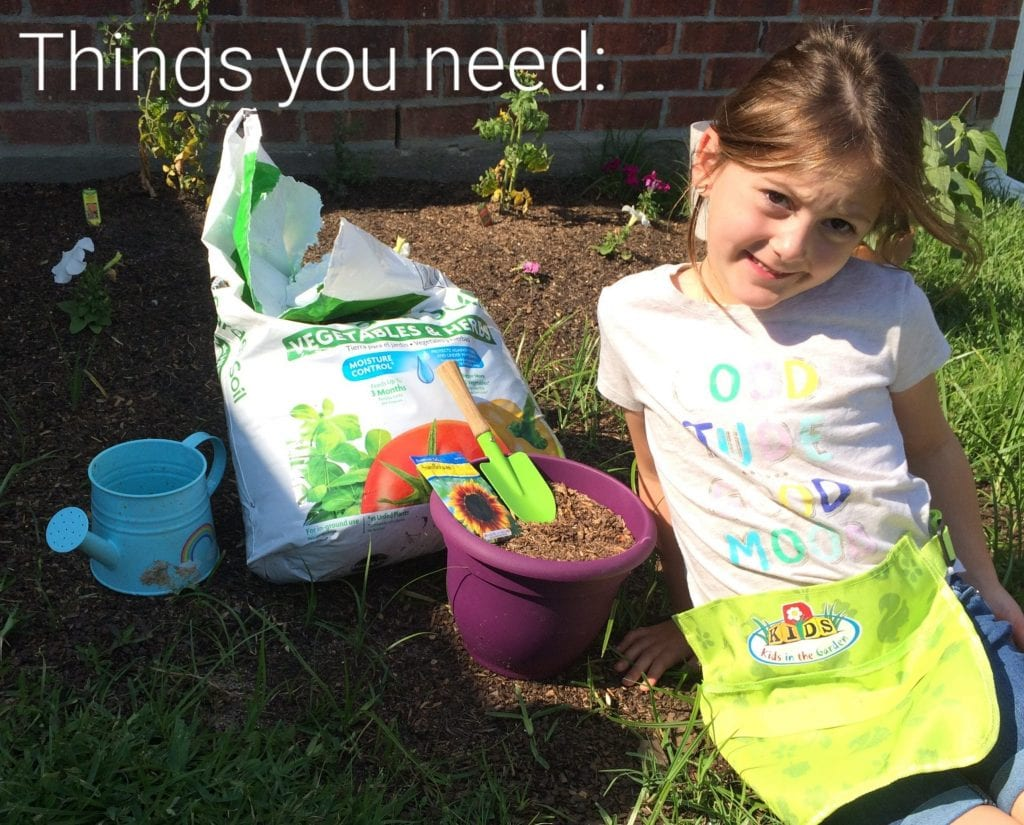 Water Dirt And Plants Oh My Gardening Activity For Kids