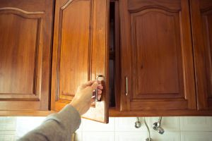 Popular Kitchen Cabinet Door Styles