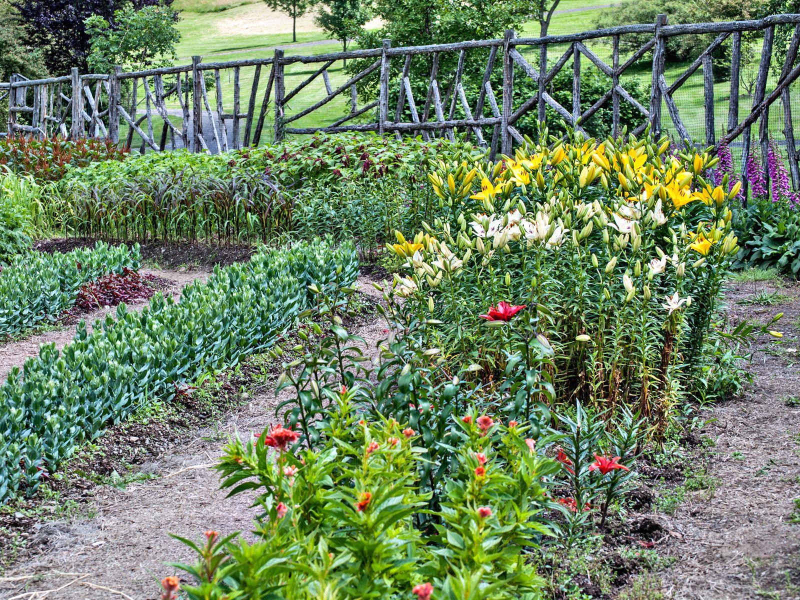 Plans Own Design Your Garden