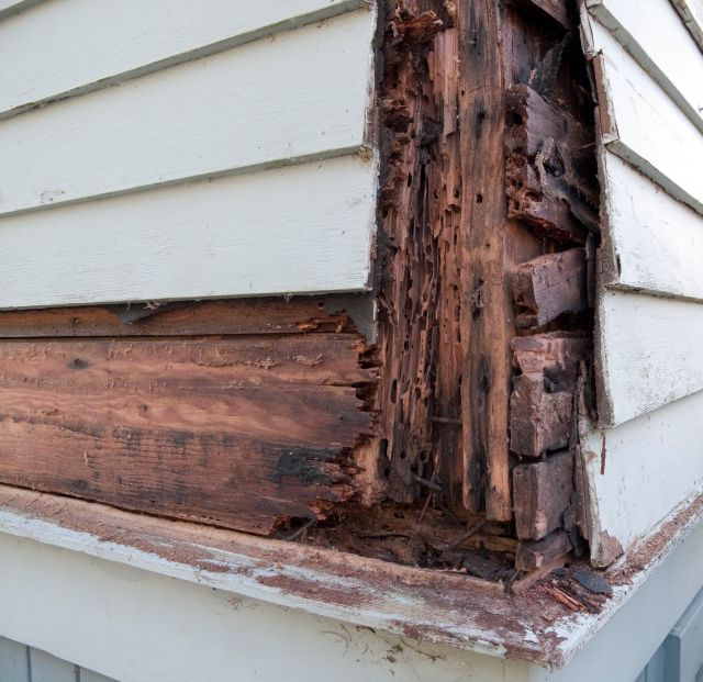 How to Repair Rot in a Deck or Balcony