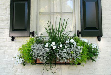 15 Gorgeous Window Box Ideas For Spring