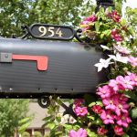 13 Ideas For An Eye Catching Mailbox Garden